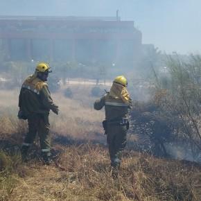 Ciudadanos (C's) Las Rozas alerta sobre la falta de medidas en la prevención de incendios forestales en la época estival