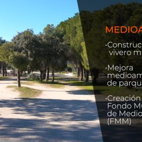 Aprobadas las medidas propuestas por Ciudadanos Las Rozas en la nueva ordenanza de arbolado urbano